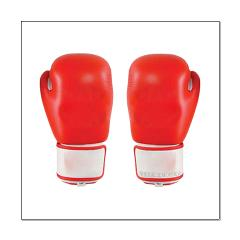 Red Boxing Gloves Posters