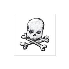 Skull and Bones Large Posters