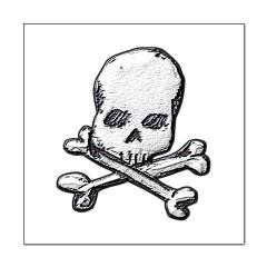 Skull and Bones Posters