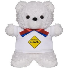 Immigration Crossing Teddy Bear