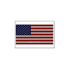 American Cloth Flag Large Posters