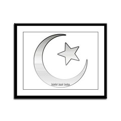 Silver Star and Crescent Framed Panel Print