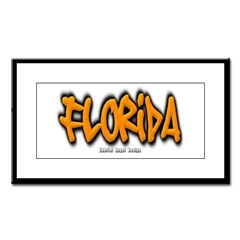 Florida Graffiti Small Framed Print