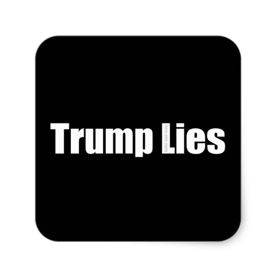 Trump Lies Square Stickers