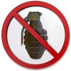 "No Grenades 3.5"" Button"