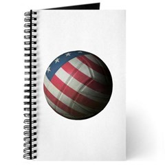 USA Volleyball Journal