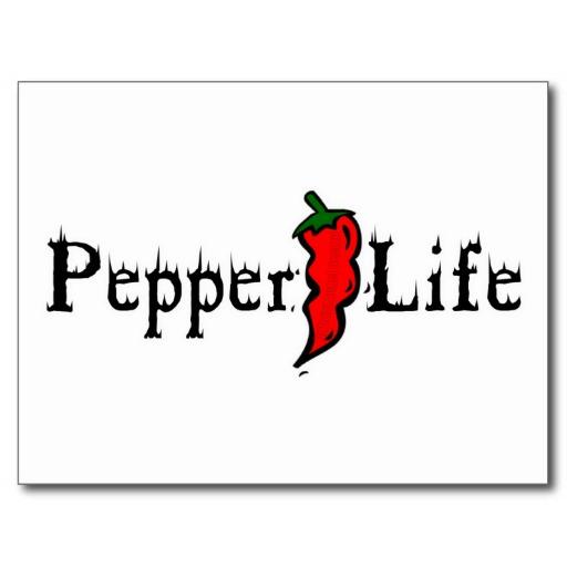 Pepper Life Postcard